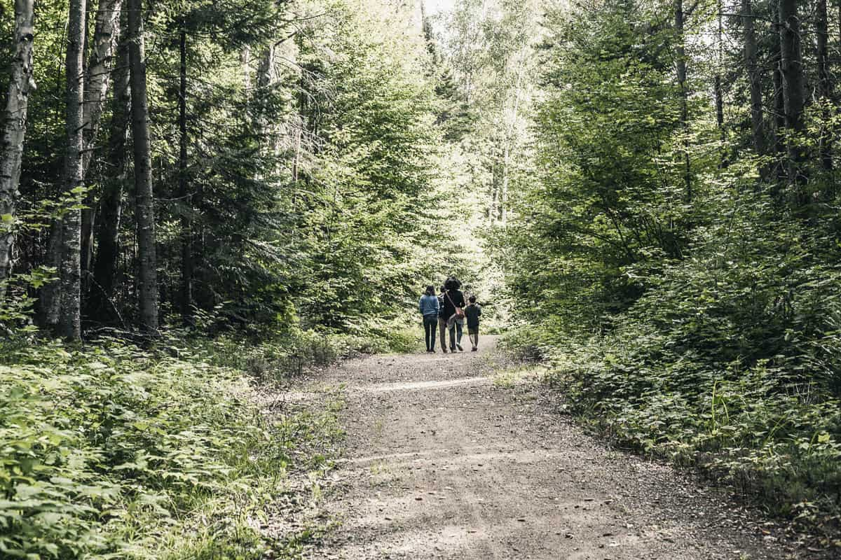 People walking in a forest